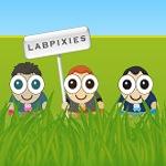 Google-LabPixies-Puchase-150