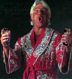 ric flair hacks ios and bb