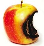 apple-rotten1