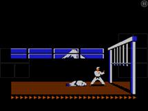 Karateka1