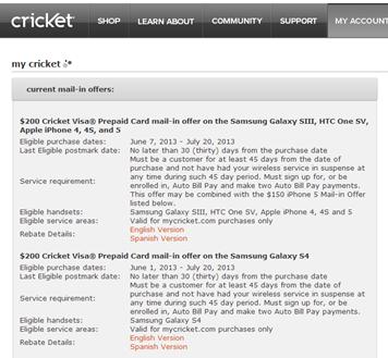 cricket details