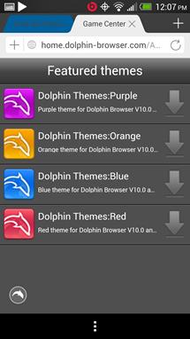 dolphin22