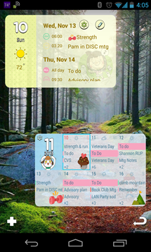 Screenshot_2013-11-10-16-05-12