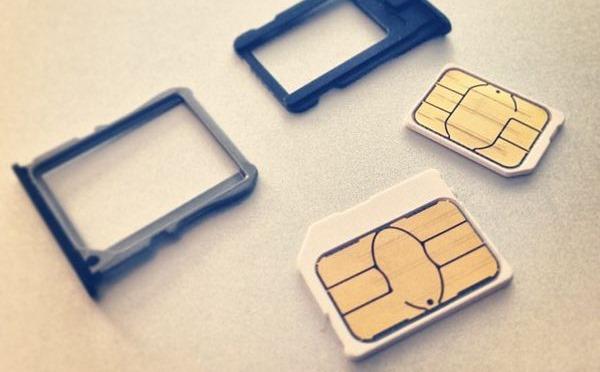nexusae0_Micro_SIM_and_Nano_SIM_card_and_trays.jpg