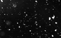 bg_weather_snow_light_night