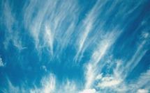 bg_weather_windy_day