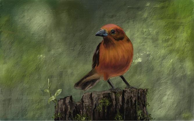 NVIDIA_Dabbler_Painting