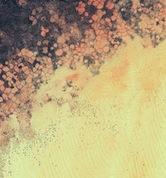 thumb-lollipop-wallpaper-10
