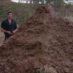 nexusae0_Jurassic-Park-9-That-is-one-big-pile-of-shit