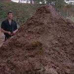 nexusae0_Jurassic-Park-9-That-is-one-big-pile-of-shit
