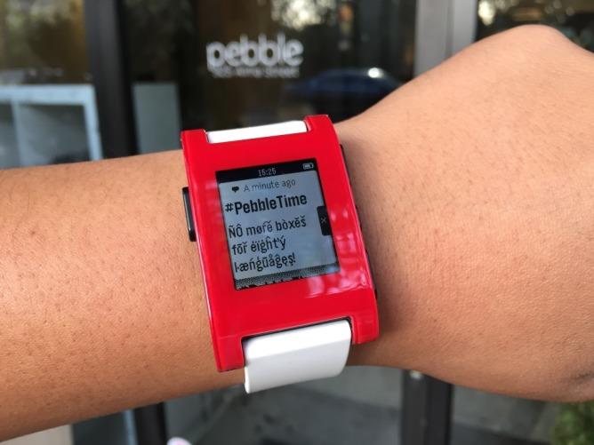 pebblewatch
