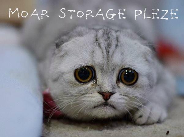 cat-sad