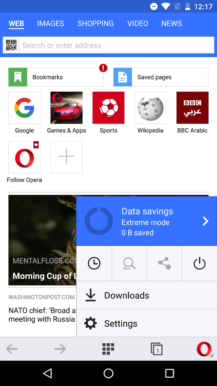 opera-mini-beta-theme-1