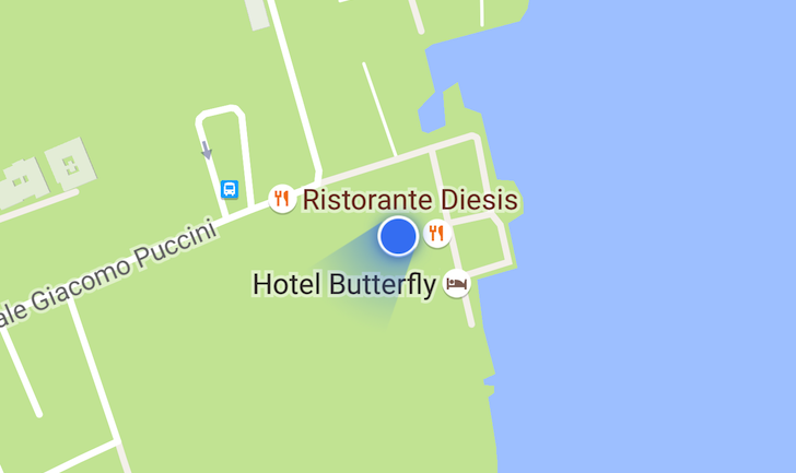 google-maps-location-indicator