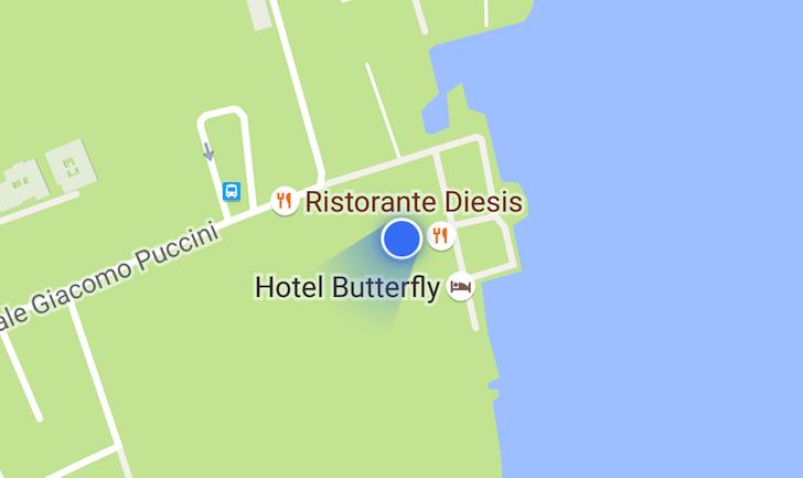 google-maps-location-indicator