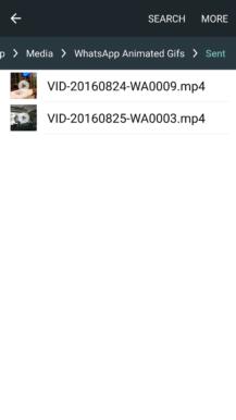 whatsapp-video-gif-4