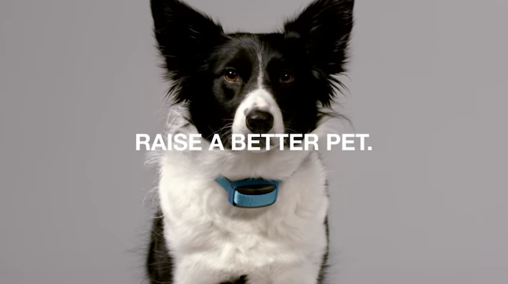 [Pawesome] Garmin releases Delta Smart dog training and activity tracker with Canine app for Android