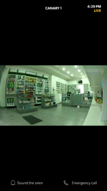 canary-app-live-view-1