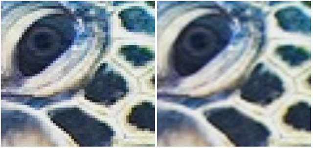 Left: Original image, Right: Bicubic upsampled version