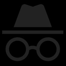 ic_incognito_indicator