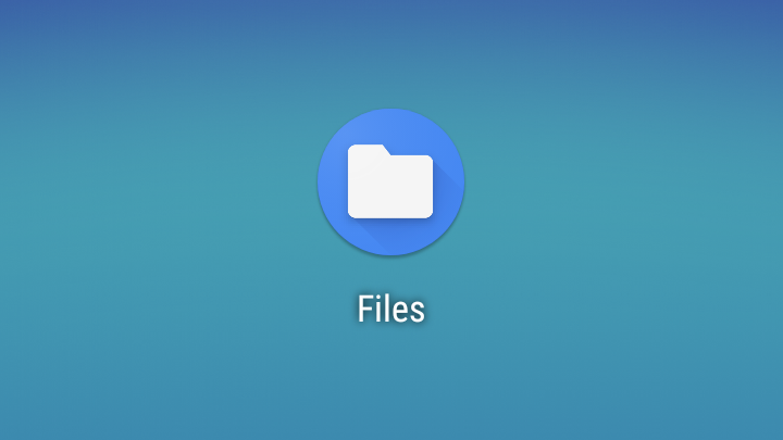 QnA VBage [Update: Files by Google updated] Scoped Storage in Android Q Beta 2 limits how apps can access files