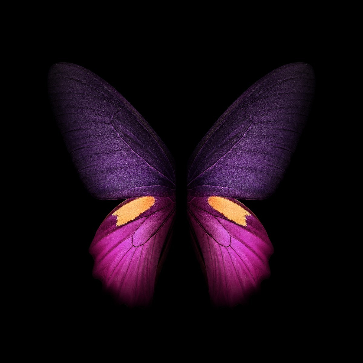 Here Are All Of The Official Wallpapers From The Samsung Galaxy Fold