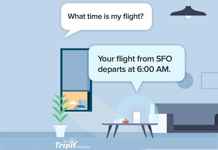 TripIt integrates with Assistant and Alexa to get you quick updates about your next flight