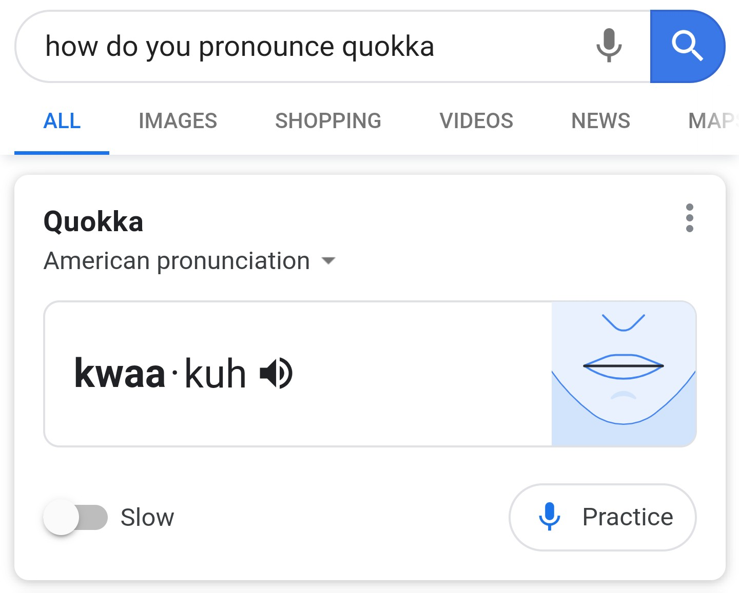 How do you pronounce anemone? Practice with Google Search