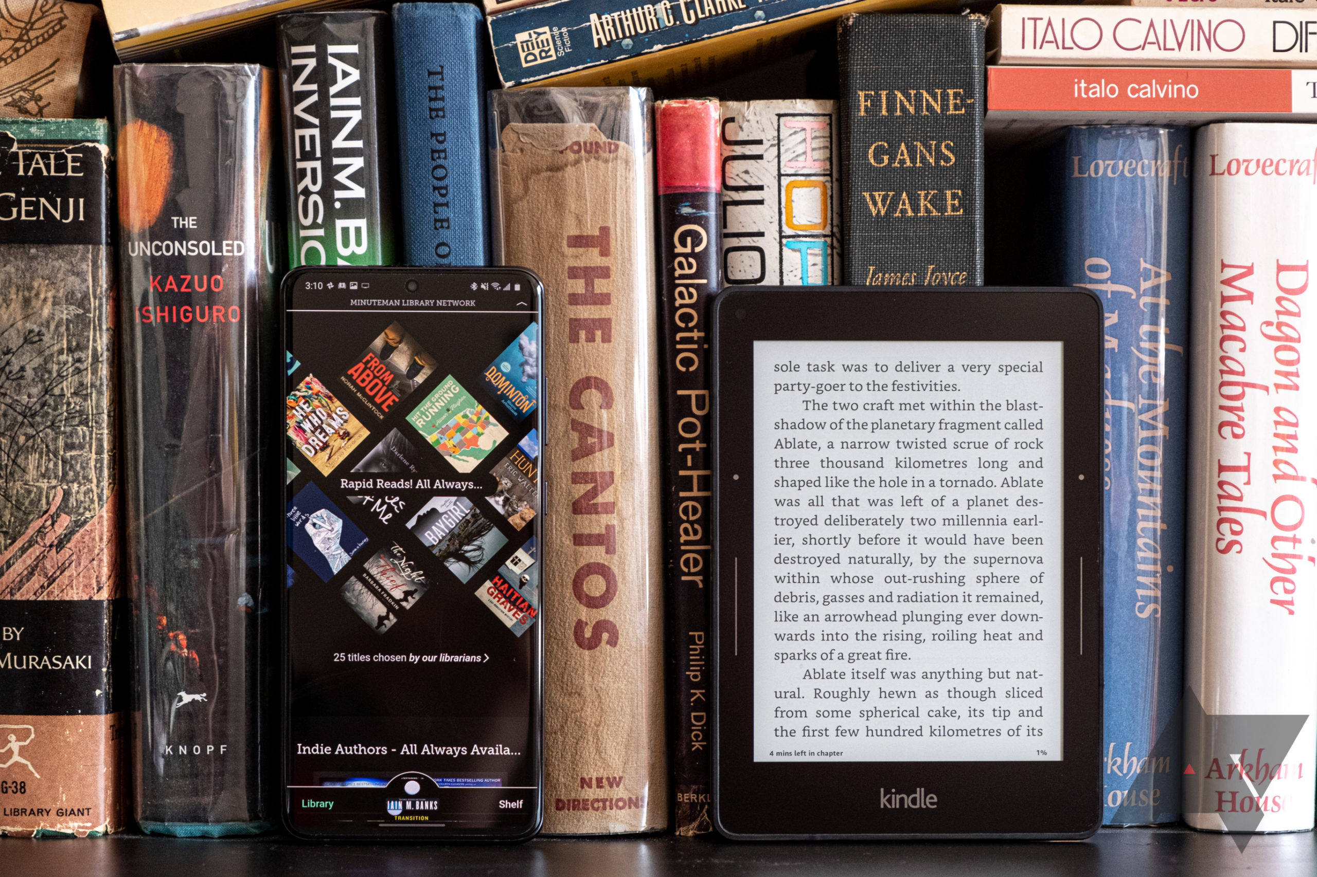 Here's how to read all your local library's books on your phone for free