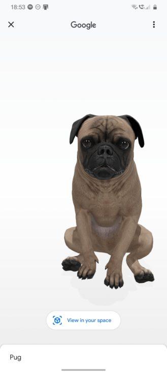 كن Tiger King في المنزل مع حيوانات Google ثلاثية الأبعاد: قائمة بجميع حيوانات الواقع المعزز ، والهواتف المتوافقة ، والمزيد (محدث) 1