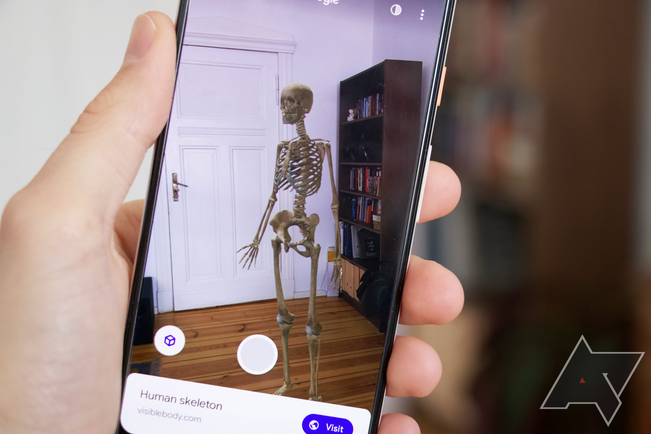 Bored with 3D animals? Google also has skeletons, cars, Santa, the Mars Rover, and other AR objects