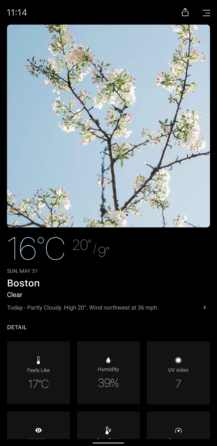 today-weather-a-217x446.png