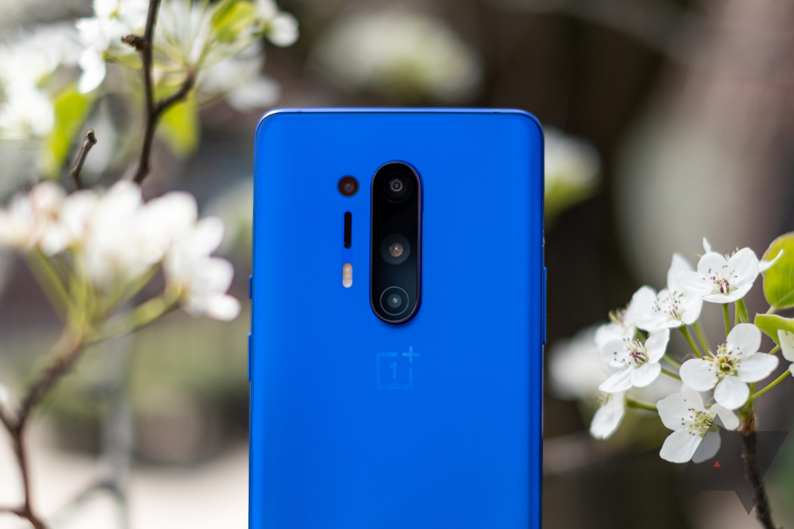 OxygenOS Open Beta 6 brings January security patch to the OnePlus 8 and 8 Pro
