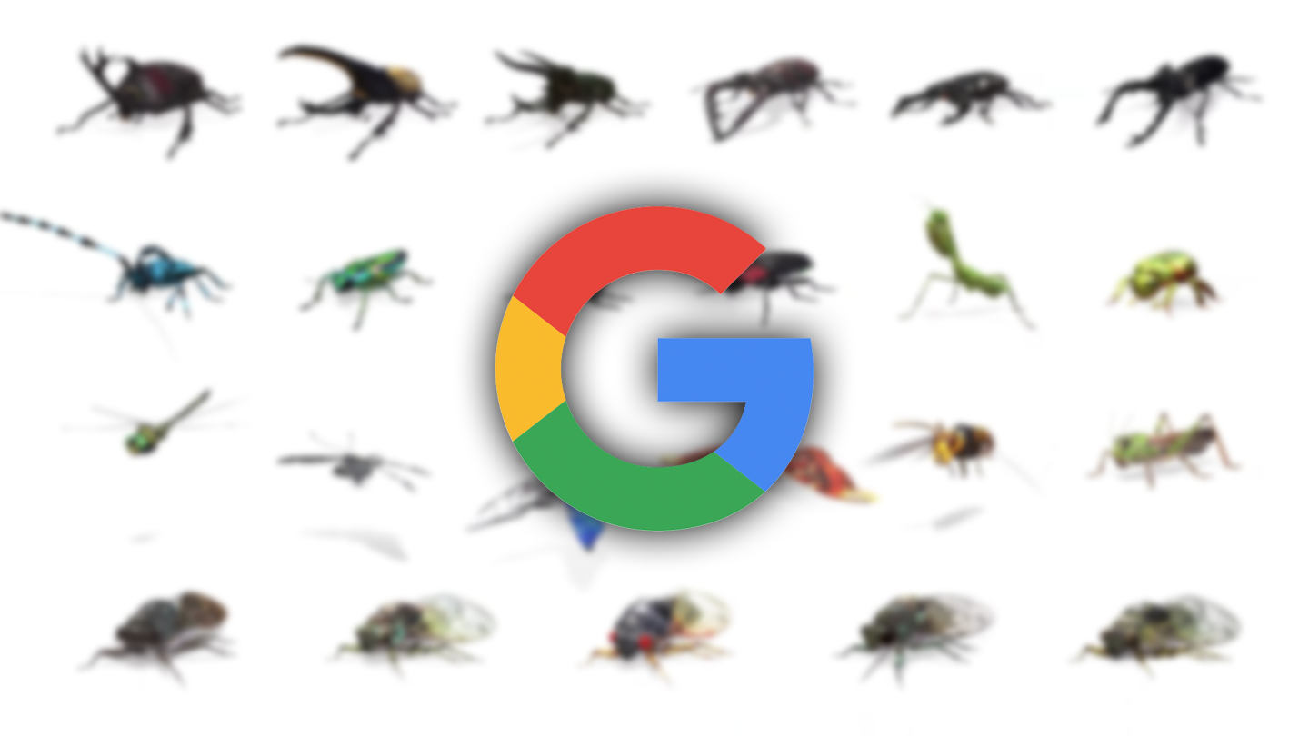 Google AR animals now include 23 beetles, butterflies, cicadas, and other insects