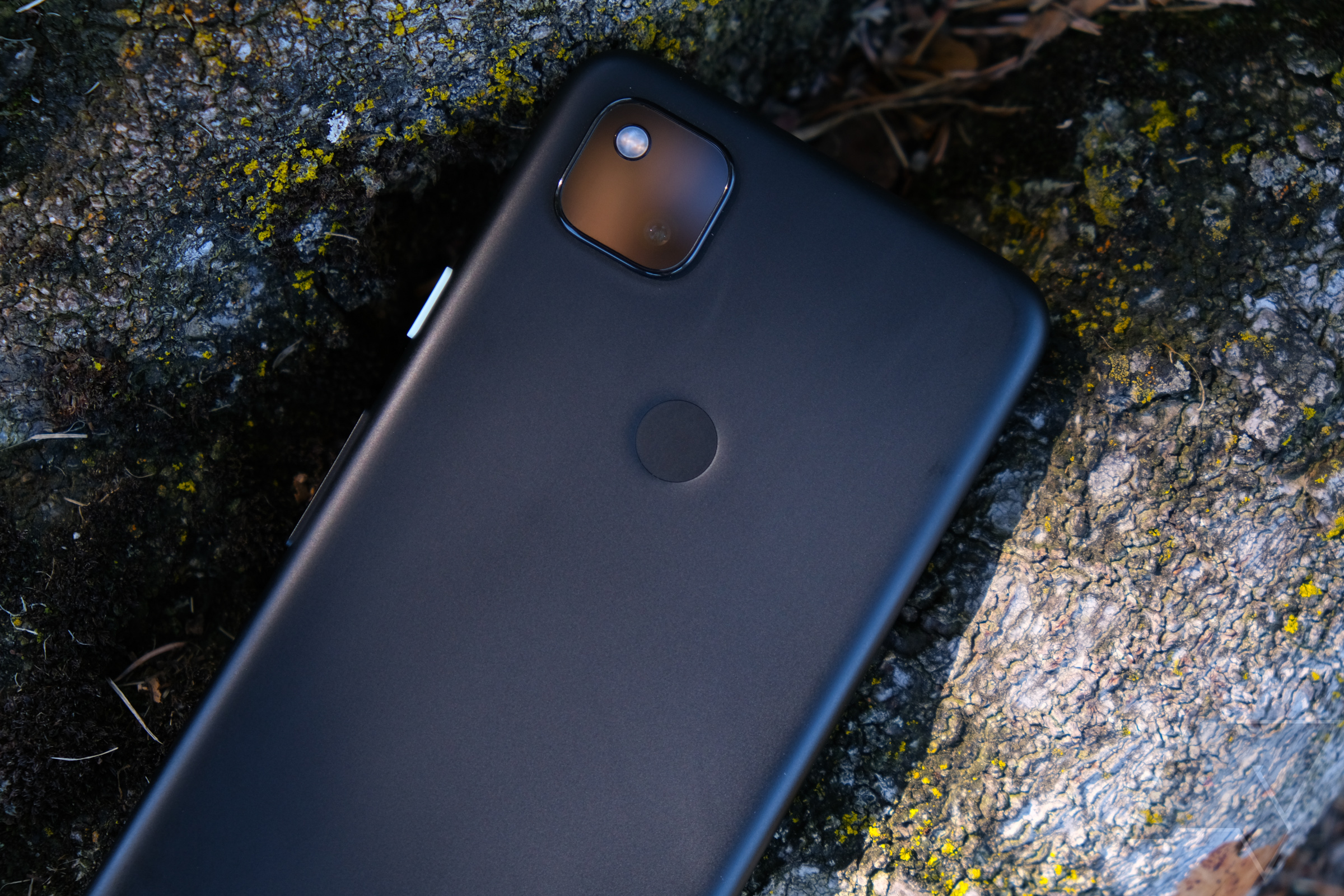 Should you buy a Pixel 4a, or wait for the Pixel 5?