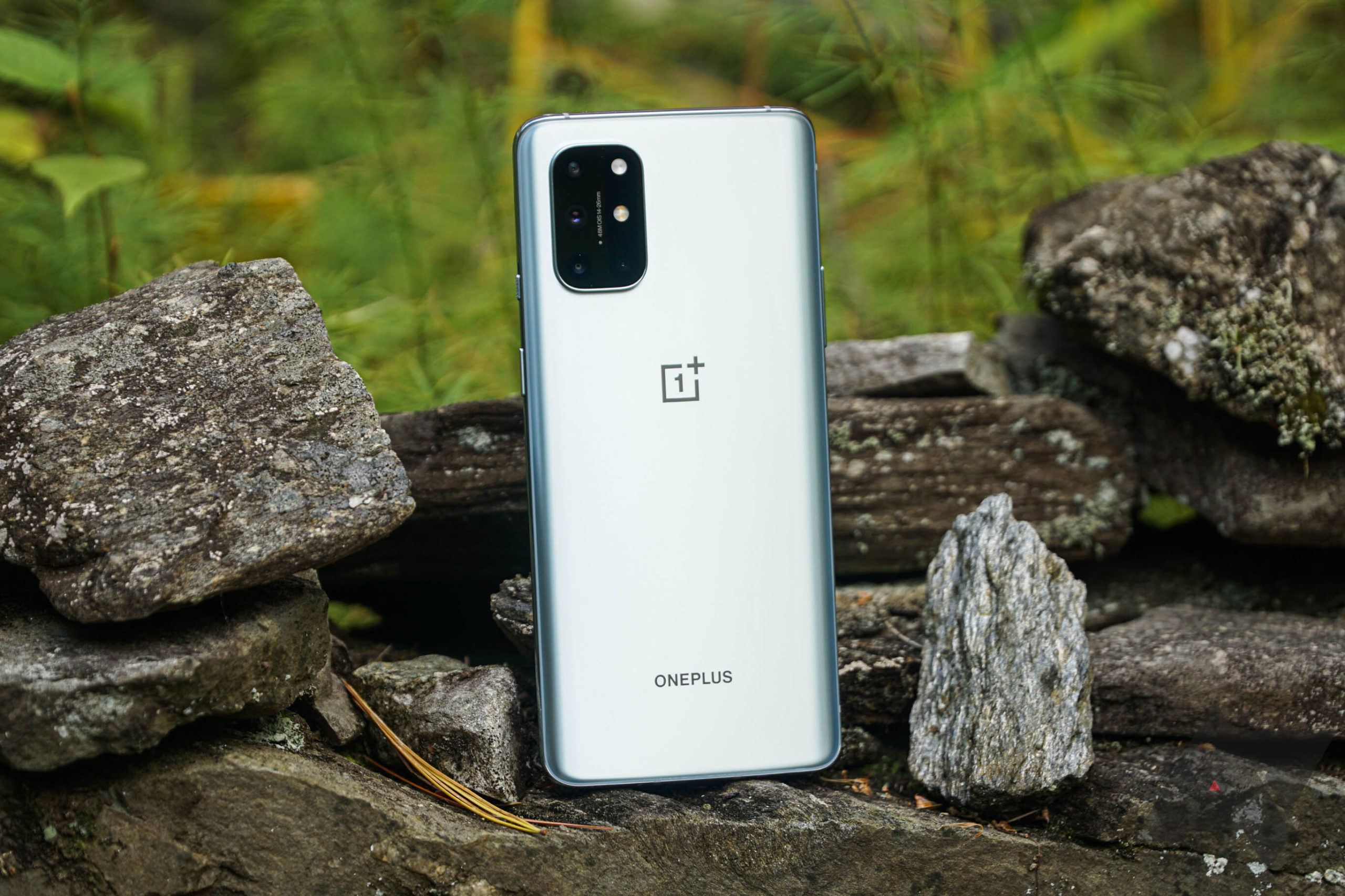 OnePlus 8T gets its first OxygenOS Open Beta - Android Police